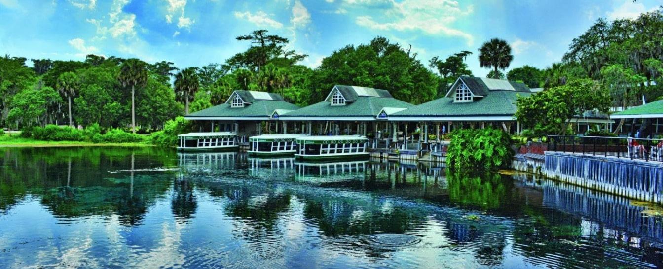 Exploring Our Backyard Waterways Series – Ocklawaha & Silver Rivers to Silver Springs